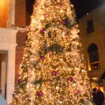 Christmas Tree at The Triangle